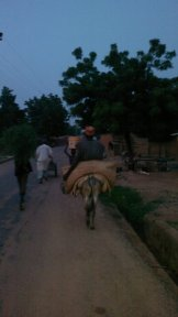 At dusk, the village farmer returns a long way to his house, to his family and to rest his tired body and soul!