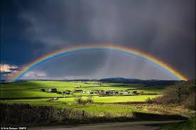 the rain's awe...